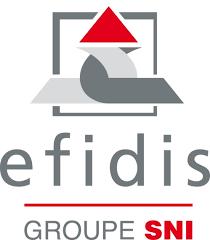 EFIDIS : élections des Délégués du personnel et des membres du Comité d'entreprise
