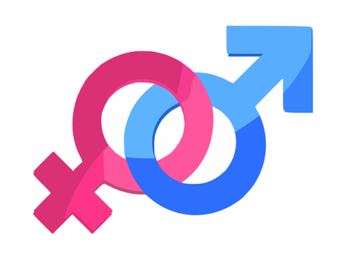 Avenant à l'accord égalité professionnelle Femmes/Hommes : l'UNSA donne un avis favorable lors de la séance du CUEP du 20 mai 2019