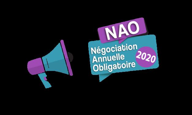 NAO (Négociation Annuelle Obligatoire) : où en sommes-nous ?